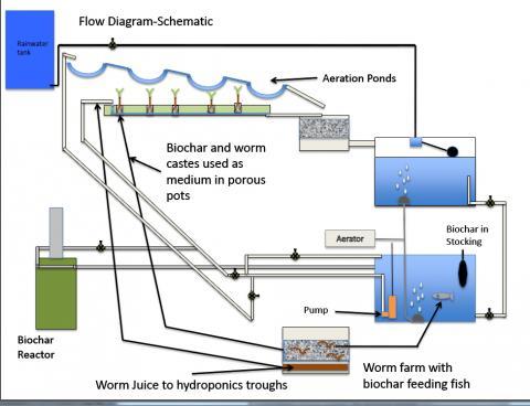 aquaponics schematic