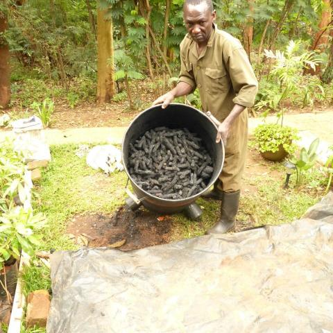 a full kin of maize cob and branch charcoal made in less the a day