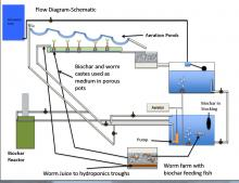 aquaponics schematic